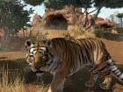 Zoo Tycoon - Pantalla