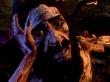 Agony - Vídeo Gameplay: Demon