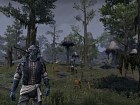 Imagen The Elder Scrolls Online: Morrowind