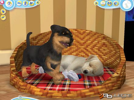 Fm juegos de mascotas 9
