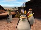 Imagen Madagascar 2 (PC)