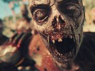 Dead Island 2 - Pantalla