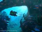 Ratchet & Clank - Imagen