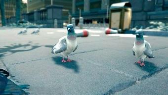 El descubrimiento semanal: Pigeon Simulator 2019, ¡las ratas del aire!