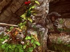 Ghost of a Tale - Imagen Xbox One