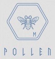 Carátula de Pollen - PC