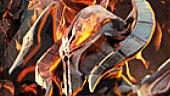 Dungeons 2: Tráiler de Gameplay