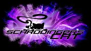 Schrödinger's Cat and the Raiders