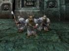 Warhammer Mark of Chaos - Pantalla