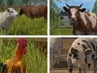 Farming Simulator 17 - Pantalla
