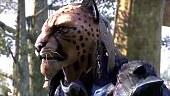 Elder Scrolls Morrowind: Un nuevo capítulo en Vvardenfell