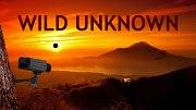 Wild Unknown