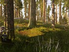 Hunting Simulator - Pantalla