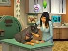 Los Sims 4 - Perros y Gatos - Pantalla
