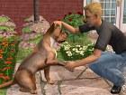 Los Sims 2 Mascotas - Pantalla