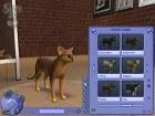 Los Sims 2 Mascotas - Imagen PC