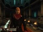 Oblivion Shivering Isles - Imagen