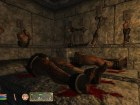 Oblivion Shivering Isles - Imagen Xbox 360