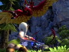 Pantalla Dragon Nest