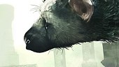 The Last Guardian: El Veredicto Final