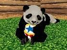 National Geographic Panda