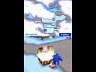 Mario y Sonic Juegos de Invierno - Imagen DS