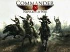 Commander Napoleon at War