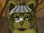 Parphenty the Cat
