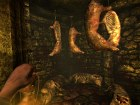 Amnesia The Dark Descent - Imagen
