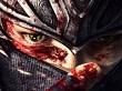 Ninja Gaiden se tomará un descanso, pero volverá