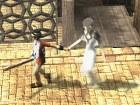 Ico and Shadow of the Colossus - Pantalla