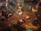 Drakensang Online - Imagen Web