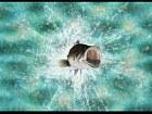 Reel Fishing Paradise 3D - Pantalla