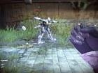 Destiny - Imagen
