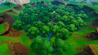 El fundador de Epic compra bosques para evitar su tala