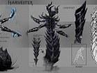 Elder Scrolls Online - Imagen PC