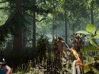 The Forest - Imagen