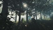 The Forest: Tráiler de Anuncio