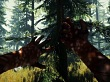PSX 2017: Tráiler Multijugador (The Forest)